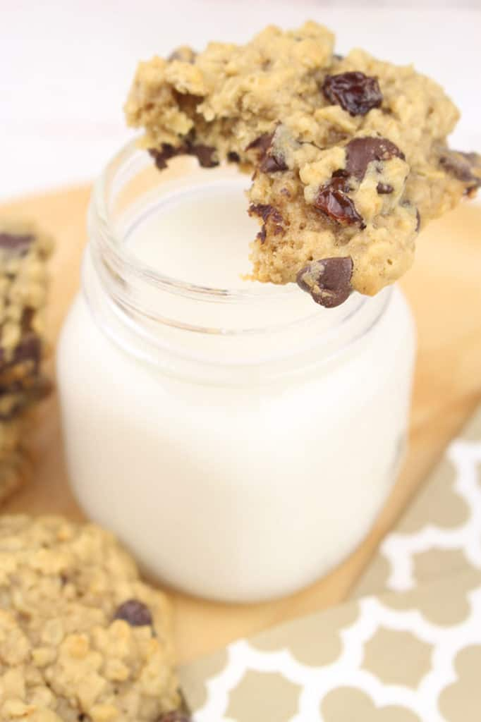 The Ultimate Oatmeal Chocolate Chip and Raisin Cookie